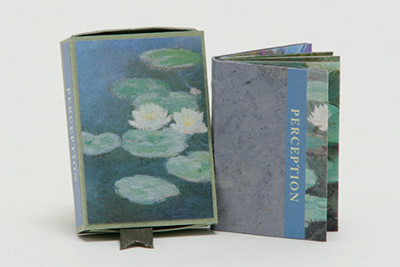 """Kniha Vnímání.   Zobrazuje malby Claude Moneta ze sekce ,,leknín"""". Tato kniha zobrazuje průběh a změnu obrazů v čase a má zdůraznit, jak radikálně se mění vnímání toho, co vidíme."""
